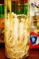 Close_up of ginseng in a bottle, Tai´an, Shandong Province, China