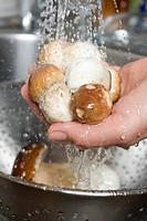 Washing ceps