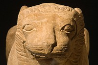 europe, italy, tuscany, chiusi, archaeological museum, exhibition of etruscan art, collection of pietro bonci casuccini, stone lion