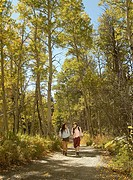Two hikers on woodland path