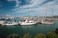 New Zealand _ North Island _ Auckland _ Westhaven Marina