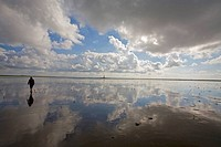 woman _ walking in wadden sea
