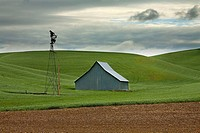 Barn in field, Washington, USA
