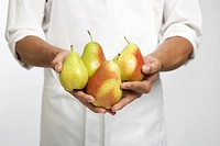 Chef holding pears mid section