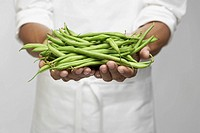 Green beans on chef´s hand mid section