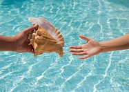 Giving conch shell to someone