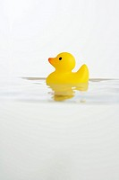 Rubber duck toy in water