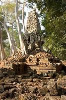Cambodia, Angkor, Siem Reap, Preah Palilay Temple