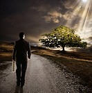 Businessman on path towards sun ray