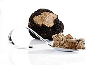 Truffle pesto on spoon