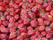Erdbeeren Sammlung