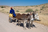Man with donkey cart, Namibia