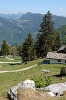 Almhütte in den deutschen Alpen