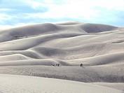 Zwerge in den Sanddünen