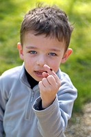 CHILD WITH ANIMAL 5_year_old boy and ladybird.