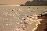 Seascape,Japan