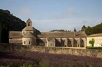 France  Provence  Vaucluse, Senanque Abbey