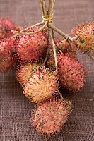 Rambutans on stalks