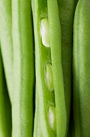 Several green beans close_up