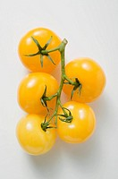 Five yellow cherry tomatoes