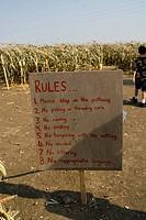 Maize Maze, Pilot Butte, Saskatchewan