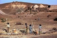Niger, Bouza