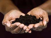 Woman´s Hands Holding Dirt