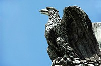 Eagle statue on Napoleon´s column at Place Vendome, Paris, France, Europe