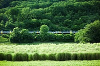 Train traveling through the countryside
