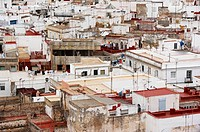 View over the rooftops of Cadiz, Andalusia, Spain, Europe