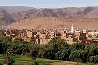 Oasis town, Tordra Gorge, Quarzazate, Morocco, North Africa