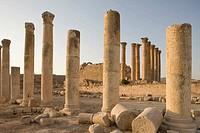 Columns roman temple ruins of artemis. Jerash. Jordan.
