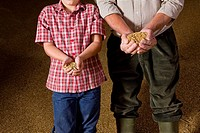 Portrait of farmer and grandson holding wheat grains