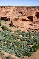 The Canyon de Chelly national monument Arizona