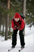 Cross_country skiing in Lapland.
