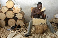 Wood carver at work, sitting next to a pile of wood trunks prepared for carving, Aburi, Eastern Region, Ghana