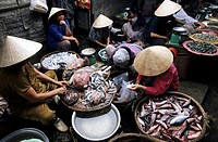 Cho Dam, central marketplace selling vegetables, meat and fish in Nha Trang, Khánh Hòa Province, South Central Coast, Vietnam, Asia