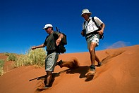 Men walking down dune, Tok Tokkie Trail, NamibRand Nature Reserve, Namibia, Africa