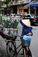 Woman watering flowers which she is transporting through the old part of town on the bicycle carrier, Hanoi, Vietnam, Asia