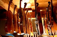 Violin maker workshop