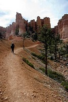 Hiker in the Bryce Canyon, Utah, USA