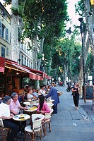 Street cafe, Cours Mirabeau, Aix en Provence, Provence, France