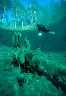 Diver in a mountain lake, Samaranger Lake, Tyrol, Austria