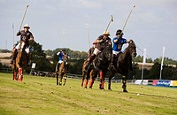 Polo tournament, Timmendorf, Schleswig-Holstein, Germany