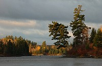 Autumn Colors at Lake of the Woods