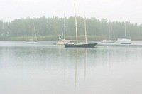 Sailboats moored offshore in morning mist