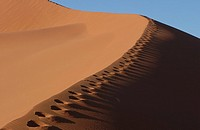 Footsteps on the edge of a sand dune, Namibia, Africa