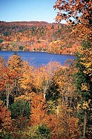 Lake in Autumn