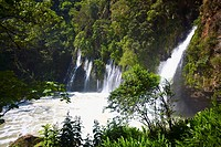 Waterfall in a forest, Tzararacua Waterfall, Uruapan, Michoacan State, Mexico