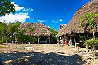Houses in a village, Hidalgo, Papantla, Veracruz, Mexico